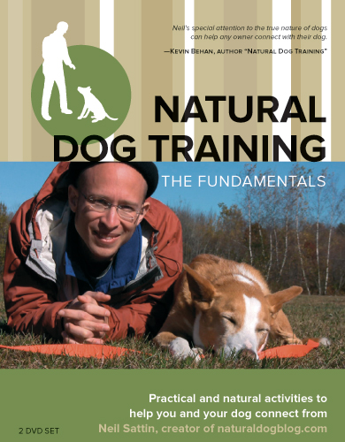 cover of the Natural Dog Training DVD set
