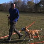 Dog Fancy Magazine Features Kevin Behan, Neil Sattin and Natural Dog Training